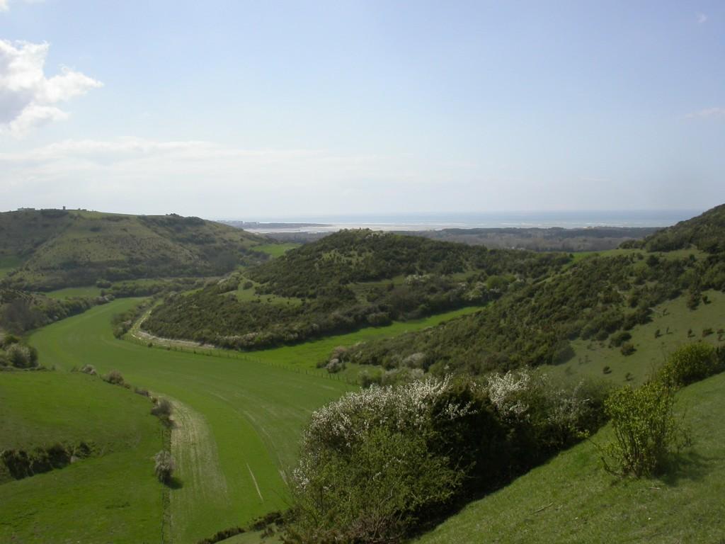 Le site des coteaux calcaires de Dannes Camiers a vu son périmètre s'étendre. (Photo : Gaëtan Rey)
