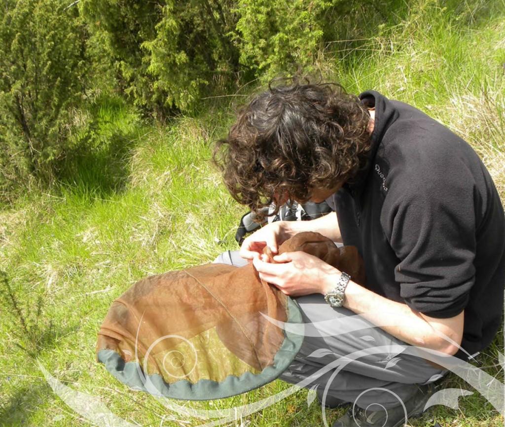 Suivi scientifique sur la RNR des Riez de Noeux-les-Auxi, à la recherche de la Virgule (Photo : CEN du Nord et du Pas-de-Calais)