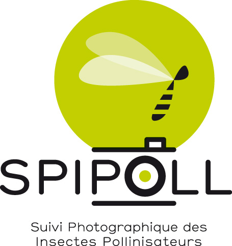 Le SPIPOLL : un programme des sciences participatives Vigie-Nature