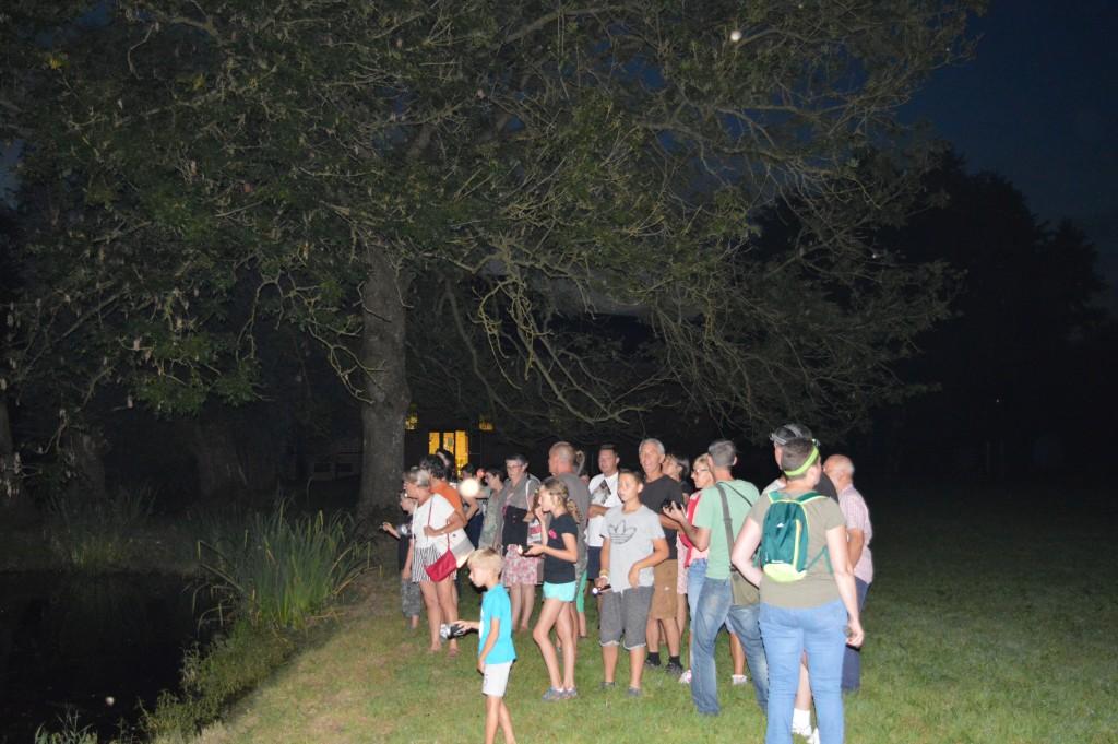 Nuit internationale de la Chauve-souris à Monceau Saint-Waast