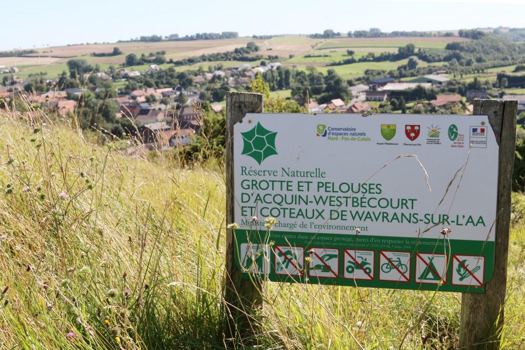 Réserve naturelle nationale de la grotte et des pelouses d'Acquin-Westbécourt et des coteaux de Wavrans-sur-l'Aa (Photo : E. Dewever)