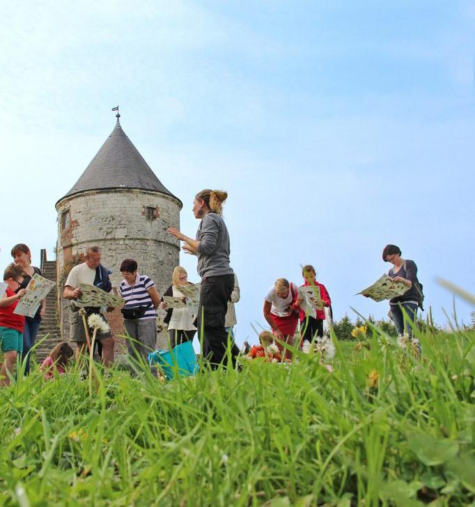 Sorties nature gratuites en Nord Pas-de-Calais